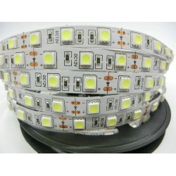 LED Strip 5050 SMD 12V Flexible Light 60LED/m