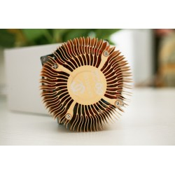 Gridseed Dual USB Miner Bitcoin and Litecoin 8G/300K